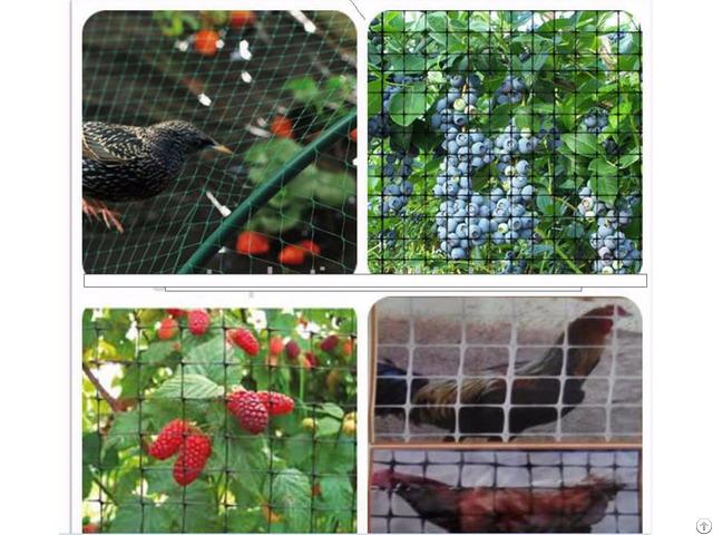 Nylon Shade Mesh Bird Netting