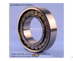 Sl183010 Bearing Ncf3010v For Heavy Machines