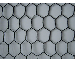 Black Vinyl Coating Galvanized Chicken Wire