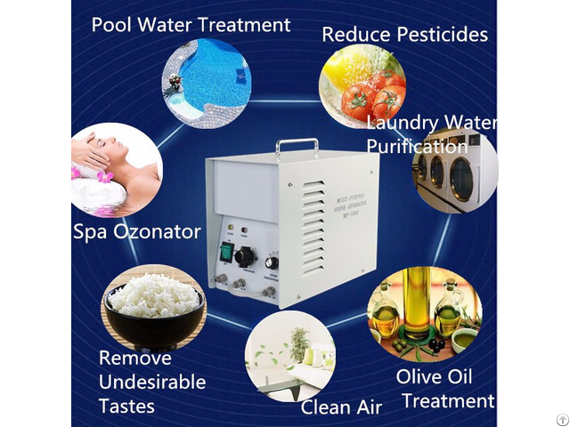 Multi Functional Ozone Generator 1g Fruits And Vegetables Washer Keep Fresh