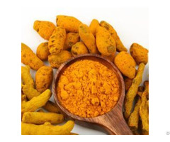 Tumeric Powder Suppliers