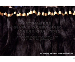 Virgin 100 Human Hair Cheap Wholesale Vietnam