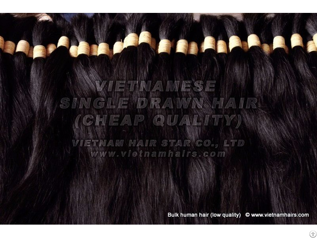 100% Human Hair Wholesale