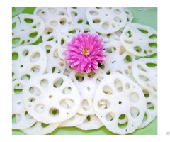 Frozen Lotus Root