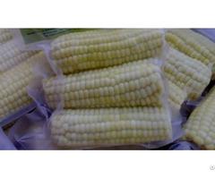 Frozen Boiled Corn