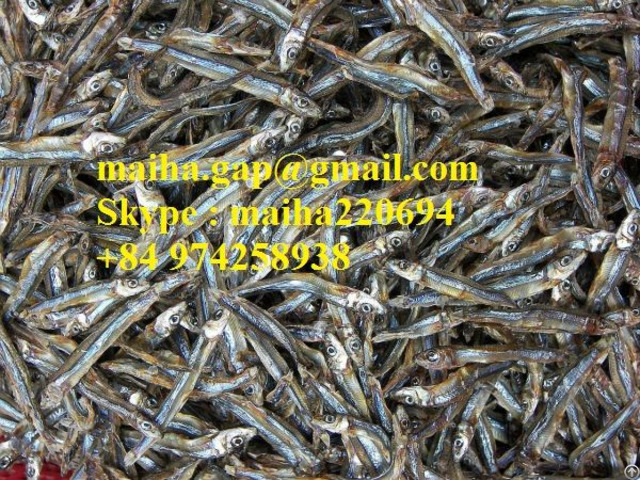 Dried Sprat Anchovy From Vietnam 100% Sun Natural For Sri Lanka