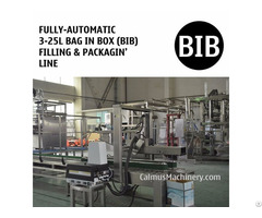 Fully Automatic 3 25l Bag In Box Filling Machine Bib Packaging Line