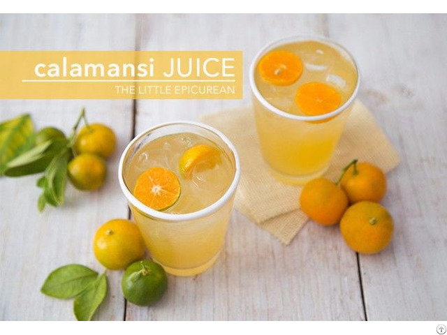 the effectiveness of calamansi juice on Transcript of an investigative using calamansi fruit an investigative study using calamansi fruit as a organic termite terminator for soil treatment conceptual.