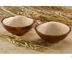 Powder 100% Pure Rice Bran