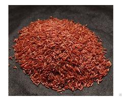 Dragon Blood Rice
