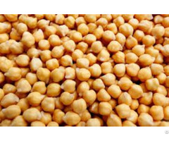 Chickpeas Kabuli Chick Peas 10mm 12mm Desi Chickpea