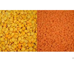 Yellow Lentils Whole And Split Lentil