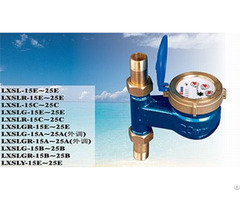 Chinese Famous Brand Amico Rotary Vane Water Meter