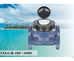 Woltman Detachable Water Meter