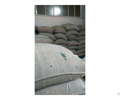 Cafe Arabica Coffee Beans