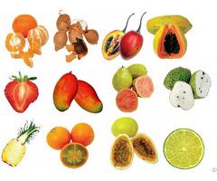 Natural Fruit Pulp