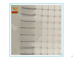 Plastic Chicken Netting Poultry Net From China Factory