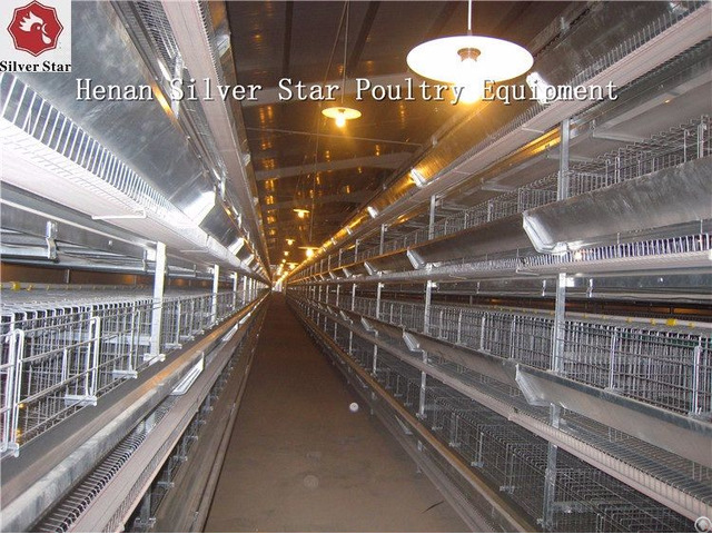 Supply Automatic H Type Vertical Battery Chicken Layer Cage
