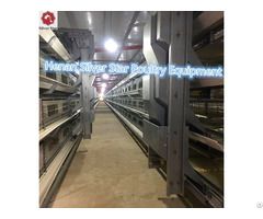 Silver Star Factory Sales Fully Automatic H Type Broiler Chicken Cage Equipments For Poultry Farm