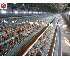 Henan Silver Star Sales Poultry Layer Pullet Rearing Cage For Nigeria Farm
