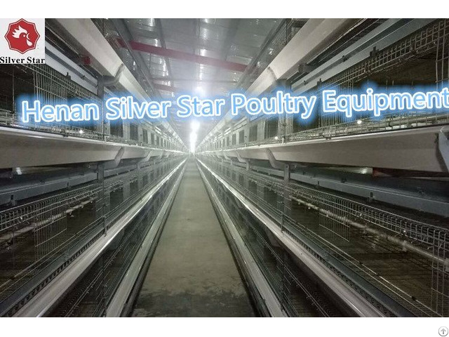 Poultry Farm Design Layout Automatic Chicken Broiler Cage For Sales In Philippines