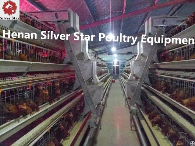 Chicken Farming Poultry Cages For Egg Layers Sales In Africa