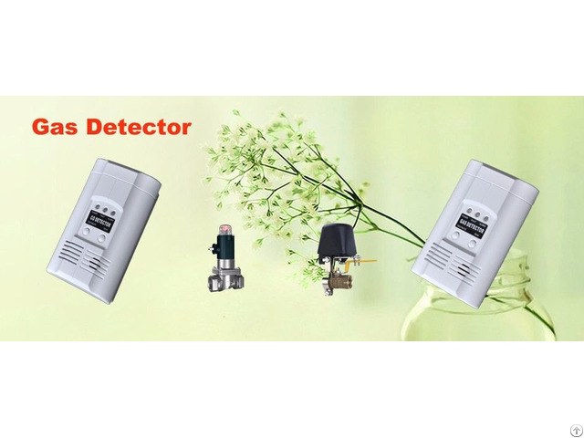 Gas Detector With Solenoid Valve
