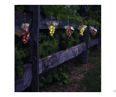 Solar Powered 64 Umbrella Grape Lights Kf84007