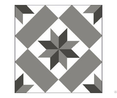 Encaustice Cement Tile Cts 11 1
