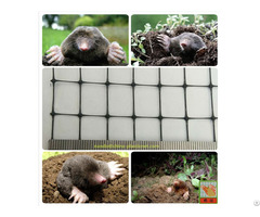 Mole Netting From China