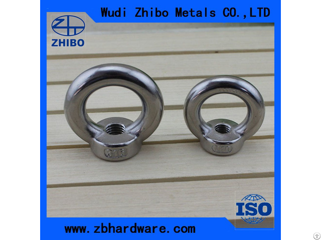 Stainless Steel Long Shank Eye Bolt
