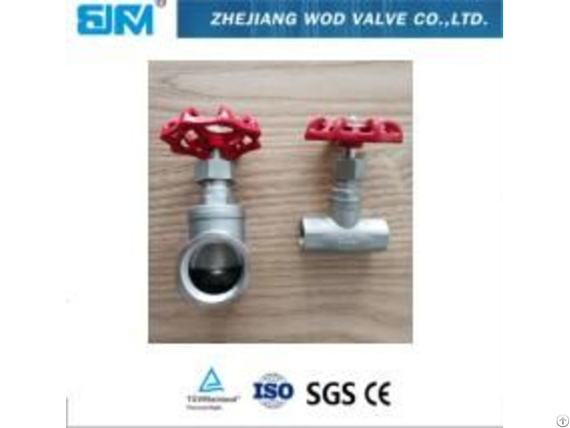 Thread Stainless Steel Globe Valve