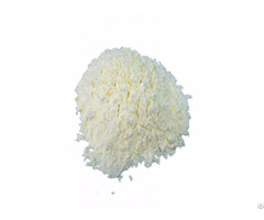 Egg White Powder Albumin