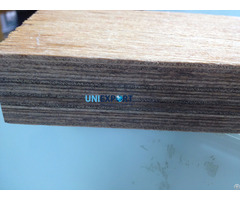 Wbp Phenol Container Flooring Plywood