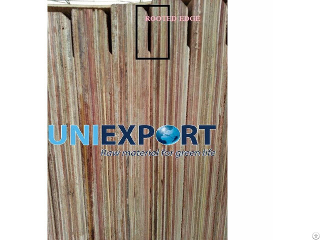 Root Edge Container Flooring Plywood
