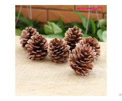 Wholesale Nature Pine Cone Accessories Photography Props Christmas Tree Decoration