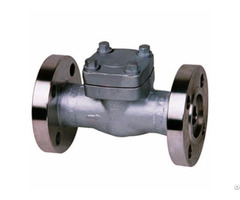 Forged Swing Lift Check Valve