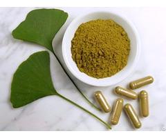 Ginkgo Biloba Extract 24 6 Cp05 Cp10 Cp15 Ep Usp