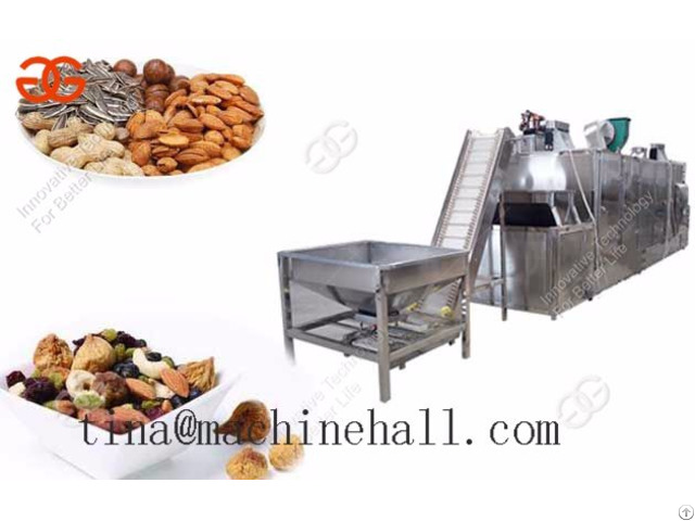 Sunflower Seed Roasting Machine Cost