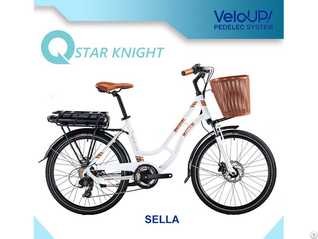 Hot Sale 36v 250w E Bicycle Electric Bike