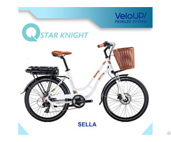 Hot Sale 36v 250w E Bicycle Electric Bike