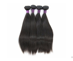 Bundle Brazilian Straight Hair Weave