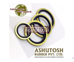 High Performance Metal Rubber O Ring Seal