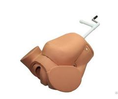 Jy F 0003 Advanced Childbirth Education Training Simulator
