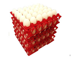 Plastic Egg Tray For Chicken Eggs 30 Holes