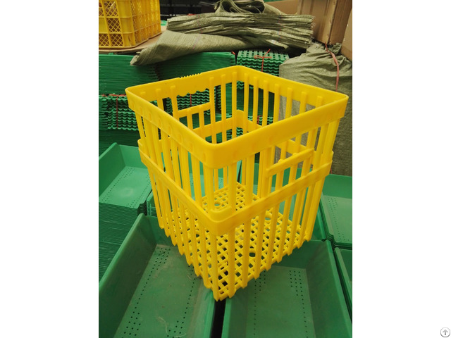 Plastic Crates For Egg Transportation 180 Eggs
