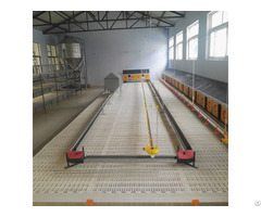 Broiler Chicken Chain Feeding System