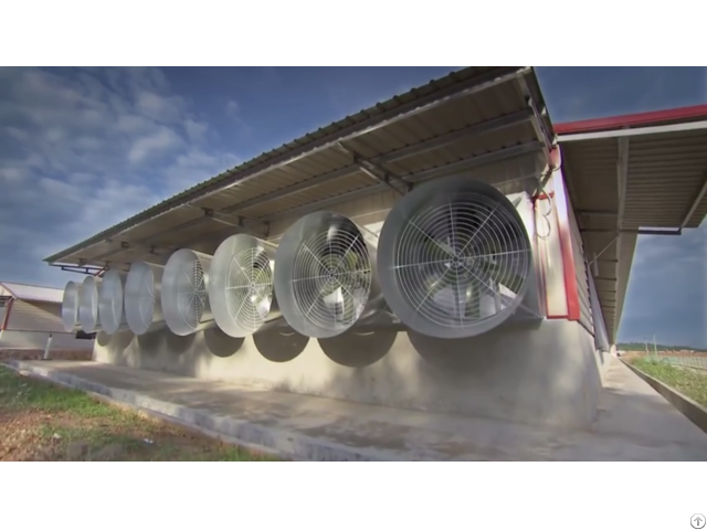 Ventilation Equipment For Poultry House