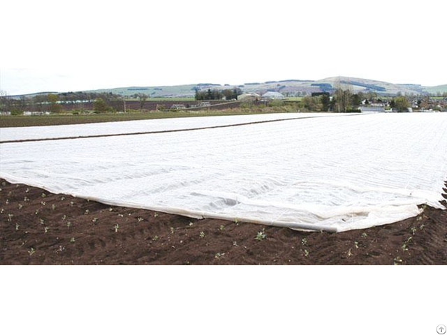Winter Protection Fabric