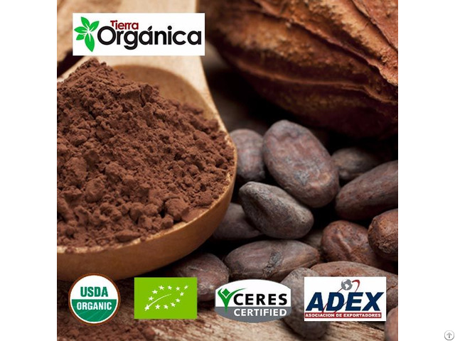 Cocoa Grains Nibs Paste Liquor